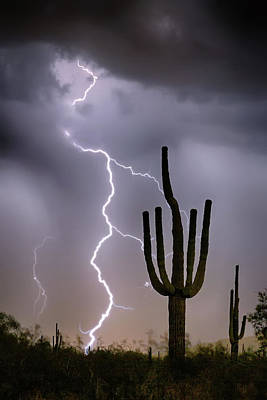 Poster featuring the photograph Sonoran Desert Monsoon Storming by James BO Insogna