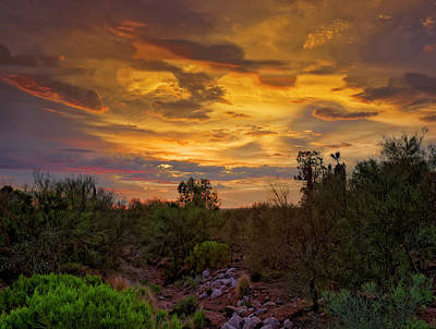 Poster featuring the photograph Sonoran Sonata H01 by Mark Myhaver