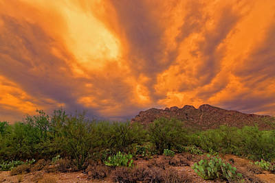 Poster featuring the photograph Sonoran Sonata H16 by Mark Myhaver