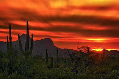 Poster featuring the photograph Sonoran Sunset H38 by Mark Myhaver