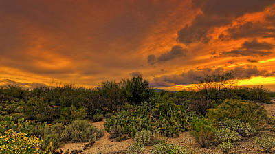 Poster featuring the photograph Sonoran Sunset H4 by Mark Myhaver
