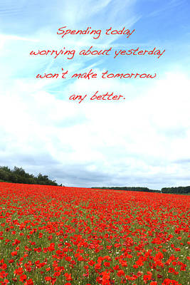 Soothing Poppies Poster