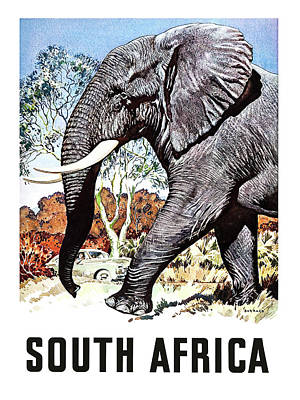 South Africa, Safari, Elephant Poster by Long Shot