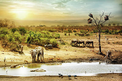 South African Safari Wildlife Fantasy Scene Poster