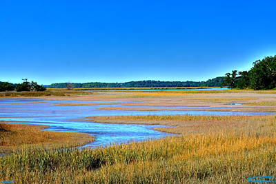 Poster featuring the photograph South Carolina Lowcountry H D R by Lisa Wooten