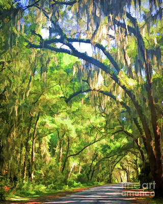 Poster featuring the photograph Southern Drive Through Spanish Moss  by Kerri Farley