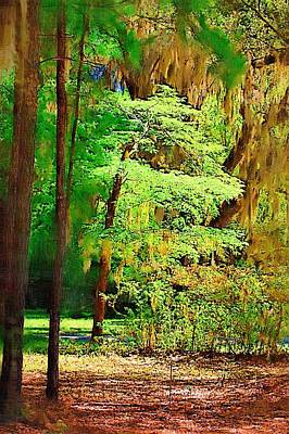 Poster featuring the photograph Southern Forest by Donna Bentley