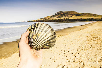 Southern Tasmanian Seaside Traveler  Poster