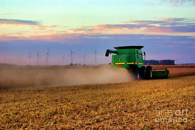 Soybean Harvest 2 Poster by Larry Dove