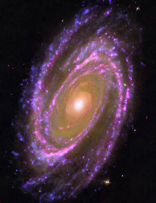 Space Image Messier 81 Spiral Galaxy Poster