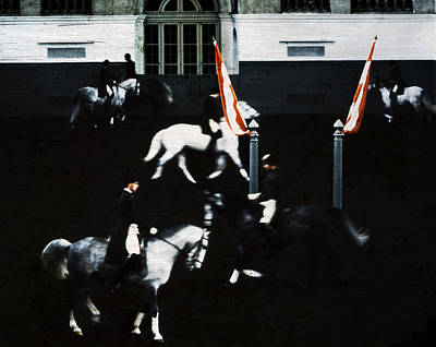 Spanish Riding School Poster by David Harding