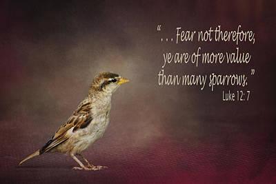 Sparrow - Bible Verse Poster by Nikolyn McDonald