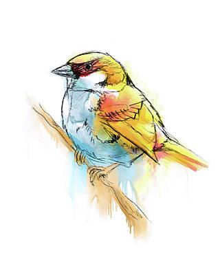 Sparrow Digital Watercolor Painting Poster