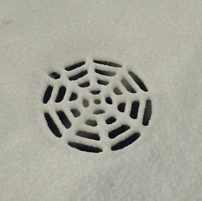 Spiderweb In The Snow Poster by Anna Villarreal Garbis