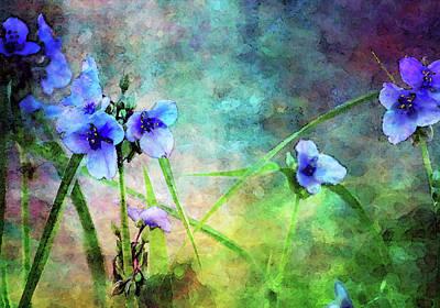 Spiderwort Dance 0115 Idp_2 Poster