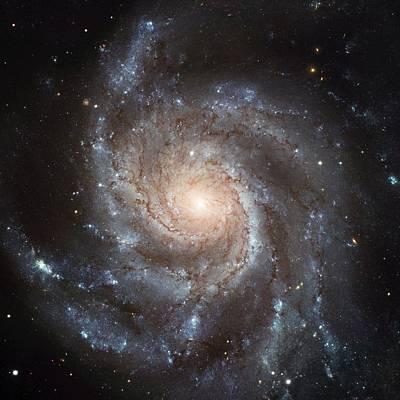 Spiral Galaxy - Messier 77 Poster
