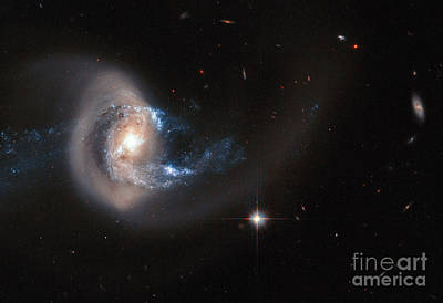 Spiral Galaxy Ngc 7714 Poster by Science Source