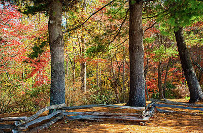Split Rail Fence And Autumn Leaves Poster