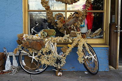 Sponge Bike Poster by Laurie Perry
