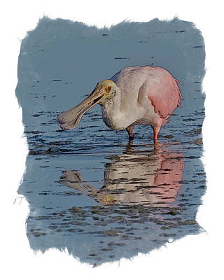 Spoonbill Reflection Poster by Larry Linton