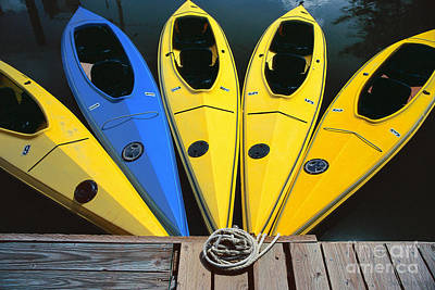 sports boat photography - Yellow Kayaks Poster
