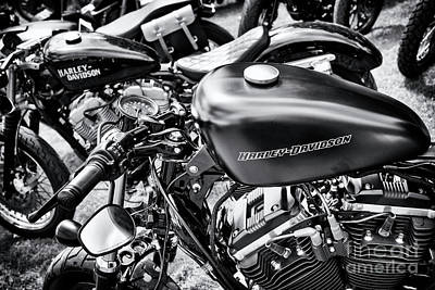 Sportsters Poster