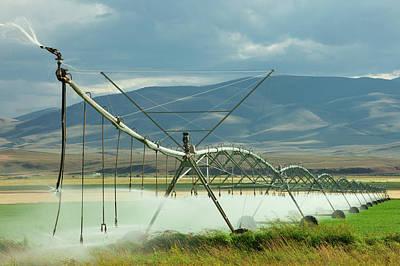 Spraying Water Poster