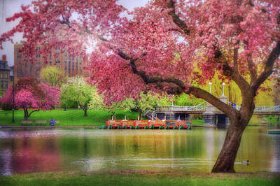 Poster featuring the photograph Spring Afternoon In The Boston Public Garden - Boston Swan Boats by Joann Vitali