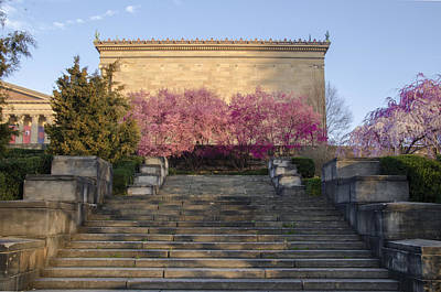 Spring At The Philadelphia Art Museum Poster by Bill Cannon