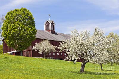 Spring Barn Poster by Alan L Graham