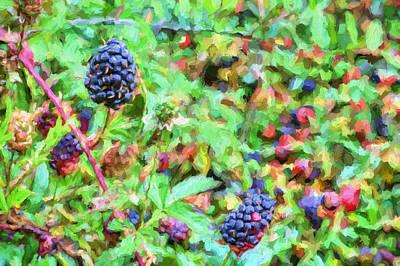 Spring Berries Poster