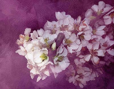 Spring Blooms Poster