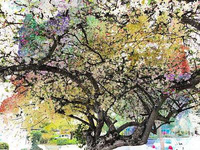 Spring Blooms Poster by Leslie Hunziker