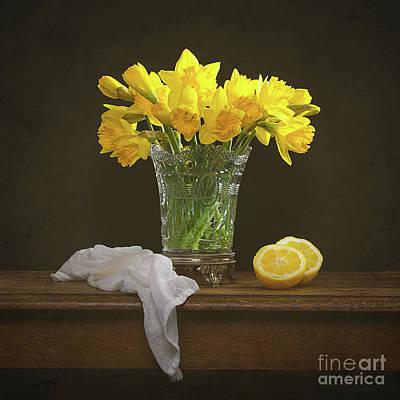 Spring Daffodil Flowers Poster by Amanda Elwell