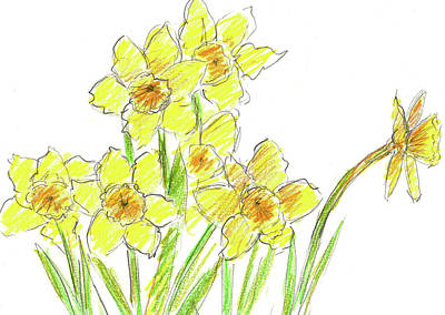 Poster featuring the painting Spring Daffodils by Cathie Richardson