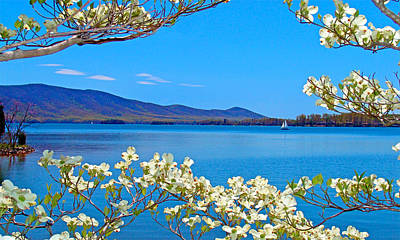 Spring Has Sprung 2 Smith Mountain Lake Poster by The American Shutterbug Society