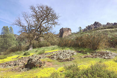 Poster featuring the photograph Spring In Pinnacles National Park by Art Block Collections