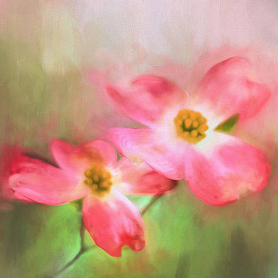 Spring Pink Poster by Darren Fisher