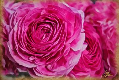 Spring Pink Roses Poster by Joan Reese