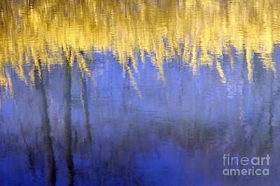 Spring Reflections Poster by Living Color Photography Lorraine Lynch