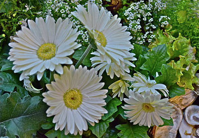 Poster featuring the photograph Spring Show 18 White Gerbera Daisies by Janis Nussbaum Senungetuk