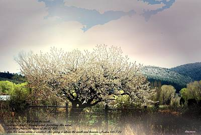 Poster featuring the photograph Spring Snow Inspiration by Anastasia Savage Ealy
