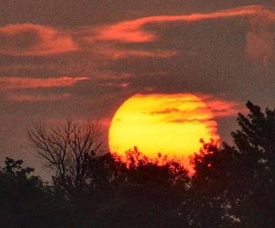 Spring Sunrise In Kentucky Poster