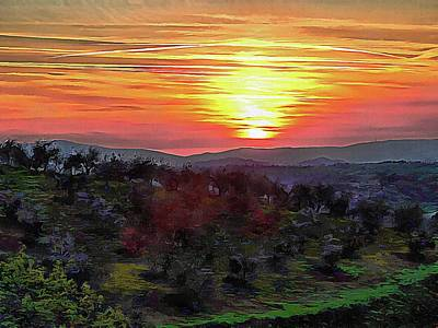 Spring Sunset Over Olive Groves Poster by Dorothy Berry-Lound