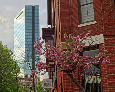 Spring Time In The South End Boston Ma Poster by Toby McGuire
