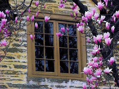 Spring Window Poster by Joyce Kimble Smith