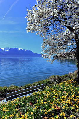 Springtime At Geneva Or Leman Lake, Montreux, Switzerland Poster by Elenarts - Elena Duvernay photo