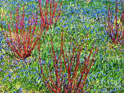 Springtime Impression Poster by Ann Horn