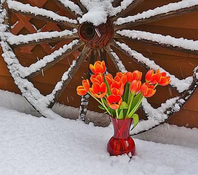 Springtime In Colorado Poster