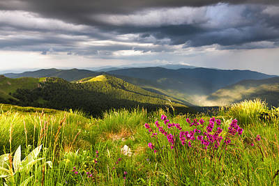 Springtime Mountain Poster by Evgeni Dinev